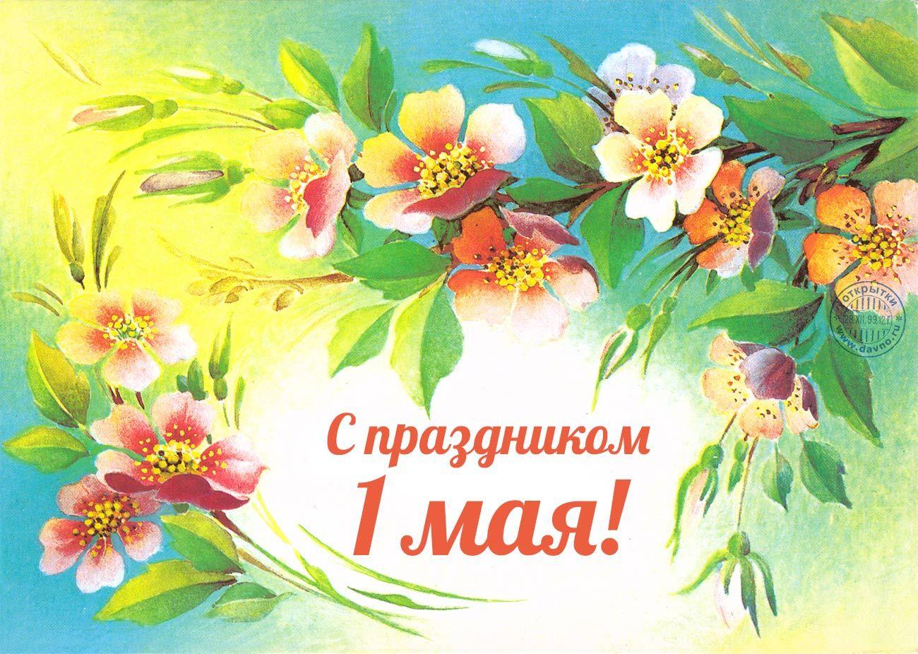 тематические открытки с праздниками и выходными приеме витафона намного